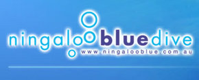 Ningaloo Blue Dive - Accommodation Yamba