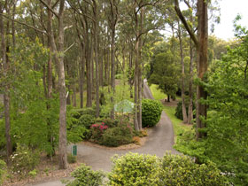Mount Lofty Botanic Garden - Accommodation Yamba